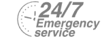 24/7 Emergency Service Pest Control in Rotherhithe, South Bermondsey, Surrey Docks, SE16. Call Now! 020 8166 9746