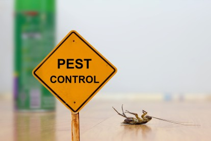 Pest Contol in Rotherhithe, South Bermondsey, Surrey Docks, SE16. Call Now 020 8166 9746